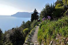 hiking the trail betwen Vernazza and Corniglia on the cinque terre