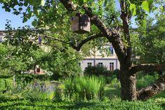 Jardin des Cordeliers///Le jardin des plantes médicinales regroupe des reconstitutions de biotopes. Juste à côté, le jardin des plantes aromatiques offre quant à lui diverses espèces de plantes venues de tout horizon : pélargoniums d'Afrique, lavande, sauge, rosiers botaniques...