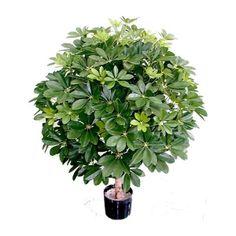 Artificial plant, 3' arboricola
