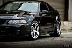 New Edge Mustang. A black cobra just like this, is what I dream of.