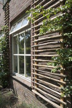 Cerca Natural, Dream Garden, Home And Garden, Garden Trellis, Bamboo Garden, Garden Structures, Garden Spaces, Garden Projects, Garden Inspiration