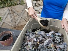 Vermicomposting: How to Compost With Worms : Page 03 : Outdoors : Home & Garden Television Composting At Home, Worm Composting, Organic Fertilizer, Organic Gardening, Urban Homesteading, Urban Farming, Natural Solutions, Worms, Home And Garden