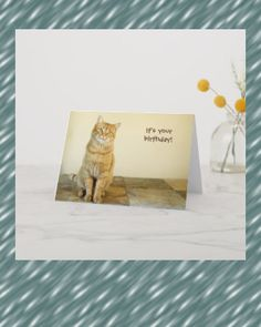 Shop Orange Tabby Birthday Card created by LeftCoastPhotos. Personalize it with photos & text or purchase as is! Birthday Invitations, Birthday Cards, Orange Painting, Orange Tabby Cats, Fall Birthday, Retro Flowers, Custom Greeting Cards, Thoughtful Gifts, Paper Texture