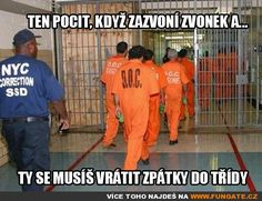Ten pocit, když zazvoní zvonek a… Good Jokes, Funny Jokes, Story Quotes, True Stories, Best Quotes, Haha, Funny Pictures, Writing, Humor