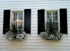 Window Boxes and Black Shutters