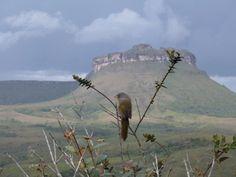 Vale do Capão, Parque Nacional da Chapada Diamantina, Bahia