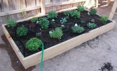 Thirty Minute Thirty Dollar Raised Bed
