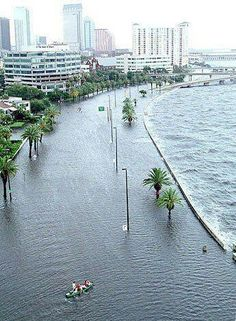 tampa waterspout | of 10 TILTING & SINKING; Florida streching: Historic flooding in ...