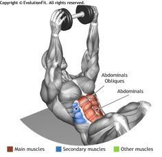 ABDOMINALS -  DUMBBELL SIT UP