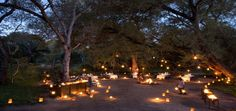 More Than Just a Hotel Room: 12 Extraordinary Getaways Africa Safari Lodge, Sand Game, Game Lodge, Most Romantic Places, Sleeping Under The Stars, Game Reserve, This Is Us Quotes, African Safari, Lodges