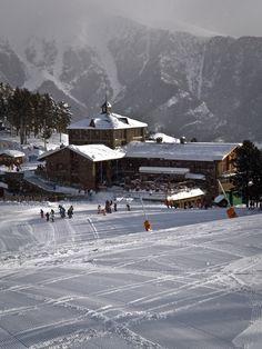 #Pal | snowzine.com