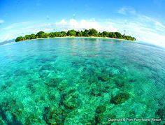 This is where Madeline is. pom pom island, borneo | Pom Pom Island - Diving in Sipadan