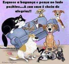 CHEIA DE ALEGRIA E DE AMOR! ❤😀🙏😻❤ #cachorro #amofocinho #petmeupet #cachorroetudodebom #cachorroterapia #caopanheiro #maedegatos #maedecachorro #paidegatos #paidecachorro #filhode4patas #cachorro #gato #amoanimais #labrador #goldenretriever #shihtzu #pug #maltes #schnauzer #viralata #bulldogfrances #luludapomerania #petshop