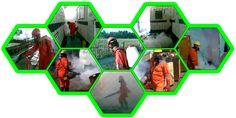 Smart Pest Control | Solusi Pintar Basmi Hama dan Anti Rayap