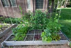 More About How To Start A Garden