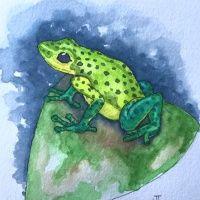 chrisfrog1