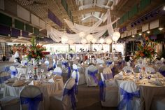 zoo weddings   Marissa & Cory: Event at The Toledo Zoo Wedding Reception Toledo Ohio
