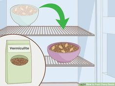 How to Plant Cherry Seeds (with Pictures) - wikiHow Cherry Tree From Seed, Growing Cherry Trees, Cherry Seeds, Comment Planter, Raising Goats, Peat Moss, Chicken Breeds, Sweet Cherries, Wild Birds