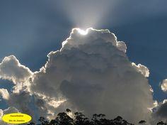 Grande Grande e só forneceu sombra, chuva para aplacar o calor de verão, e mais nada. Mendes-RJ