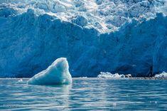 Blackstone Bay Glacier, Alaska