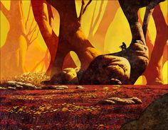 Image of The Forest of Oversensitivity (Dan McPharlin)