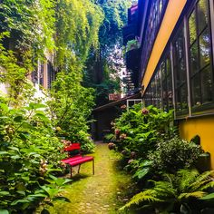 A hidden oases in town My Town, Zurich, Switzerland, Oasis