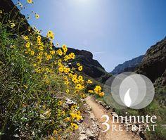 La maravilla de la fe 3 Minute Retreat