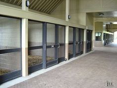 All crosshatch mesh stalls. Good for ventilation. Lucas Equine.