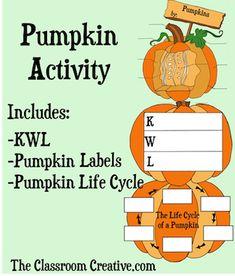 Cute pumpkin life cy