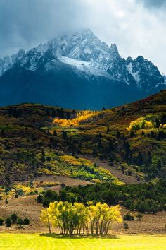 Mount Sneffels – Colorado - great picture, great contrast between foreground and the mountain in the background.**********I love Colorado Wyoming, Places To Travel, Places To See, Travel Destinations, Beautiful World, Beautiful Places, Wonderful Places, Beautiful Pictures, Beautiful Forest
