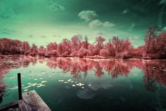 Are these photos real, or are we dreaming? Here's a glimpse of the incredible infrared photographs taken by photographer David Keochkerian. More photos HERE: http://slate.me/UGdq2O