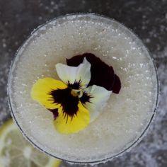 Salted_Lemon_Shine_Margarita