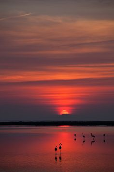 Red Sunset #BeautifulNature #NaturePhotography #Nature #Photography #Sunsets #Reflections #Beaches