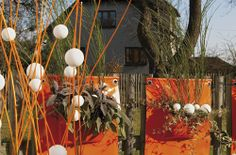 Kapsáře na plotu