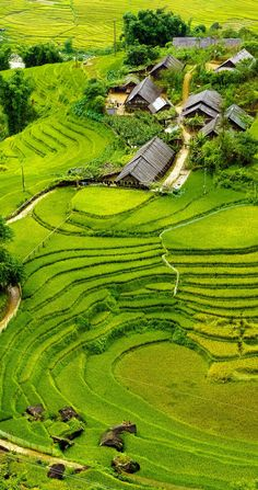 Rice fields on terraced of Mu Cang Chai, YenBai, Vietnam. 17 Unbelivably Photos Of Rice Fields. Places Around The World, Oh The Places You'll Go, Places To Travel, Around The Worlds, Vietnam Voyage, Vietnam Travel, Phuket, Laos, Wonderful Places