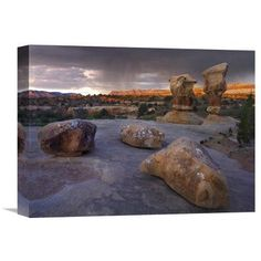 Global Gallery Devils Garden Sandstone Formations Escalante National Monument Utah Wall Art - GCS-396782-2432-142, Durable