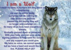 ~I am a Wolf ... Please Help Us?~