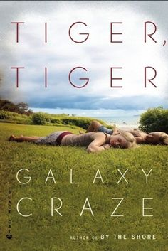 Tiger, Tiger by Galaxy Craze | 27 Must Have Queer Summer Reads