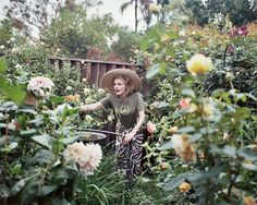 Julie Newmar and her #garden shot by Ye Rin Mok