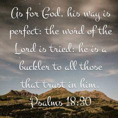 Psalm 18 KJV