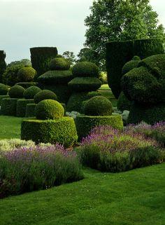 #gardendesign #gardenideas