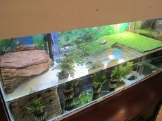 Splendid DIY Aquarium Furniture Ideas To beautify Your Home - CueThat <br> diy aquarium furniture stands are an integral part of every aquatic system. The aquarium stand should be sturdy so that it can bear the weight of a filled a Diy Aquarium, Aquarium Design, Turtle Aquarium, Turtle Pond, Aquarium Stand, Aquatic Turtle Habitat, Aquatic Turtle Tank, Aquatic Turtles, Turtle Care