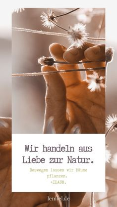 Wir sind offizieller #Partner von #Onetreeplated und lassen #bäume pflanzen #hand #plant #instagramstory Ballet Dance, Dance Shoes, Partner, Slippers, Fashion, Tree Planting, Sustainability, Things To Do, Dancing Shoes