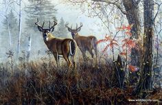 Two whitetail deer bucks stand side by side out in the brush. They are so much alike, that it makes you look twice to be sure you aren't seeing double. Double Vision is available in two signature opti
