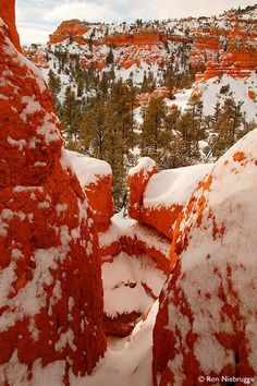 Red Rocks, Utah I want to go here!!!!