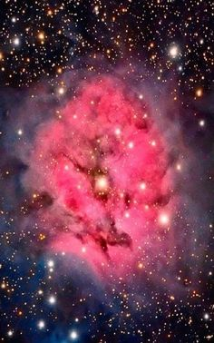 The Trifid Nebula was the subject of an investigation by astronomers using the . Cosmos, Telescope Pictures, Galaxy Background, Star Formation, Space Photos, Hubble Space Telescope, Galaxy Space, Deep Space, Space Exploration
