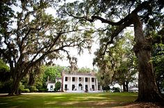 Gorgeous antebellum plantation house, Southwood, in Florida.