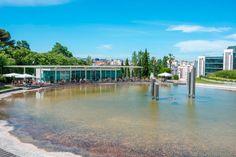 Bom dia Lisboa. Jardim Amália Rodrigues Fotografia: Armindo Ribeiro #lisboa