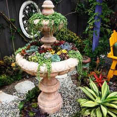 Succulent Display, Succulents In Containers, Container Gardening, Fountain, Landscape, Outdoor Decor, Gardens, Home Decor, Scenery