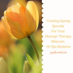 Creating Spring Specials for Your Massage Therapy, Skincare, or Spa Business Massage Packages, Spa Packages, Spa Massage, Massage Therapy, Massage Marketing, Spa Specials, Spring Spa, Exfoliating Body Scrub, Mini Facial